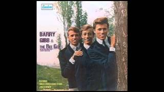 Bee Gees - How Love Was True