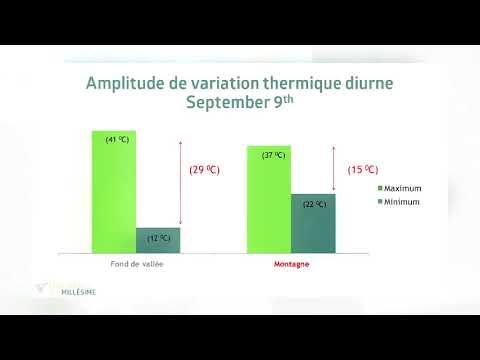 2016 Bordeaux Conference Du Millesime - Thibaut Scholasch - Astringence Amertume Date de Recolte