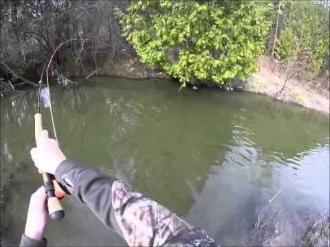 Trout Fishing The Oshawa Creek April/30/2016