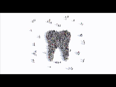 MicroCT for Dental Applications - The Root Canal Anatomy Project Part 2