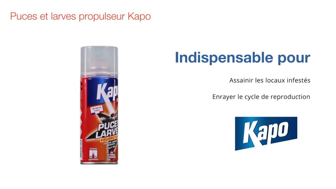 propulseur kapo pour puces et larves a rosol 200 ml. Black Bedroom Furniture Sets. Home Design Ideas