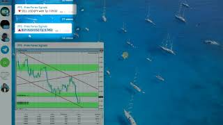Free Forex Signals in Telegram
