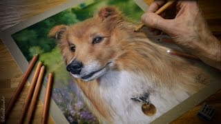 Speed drawing a dog in pastels -