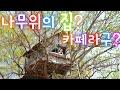 [국내여행] [사찰여행] 전북여행. 김제여행. 전북 김제 가볼만한곳 1400년이나 된 천년고찰 금산사.
