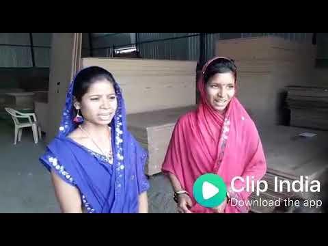 Gujarati gali song