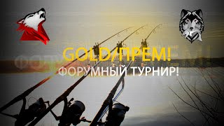 RF4 РР4 Русская Рыбалка 4 Голд Прем Форумный турнир