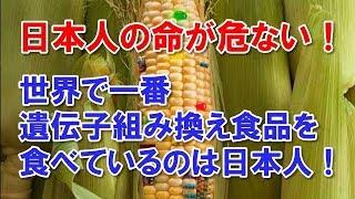 日本人の命が危ない! 世界で一番遺伝子組み換え食品を食べているのは日本人!