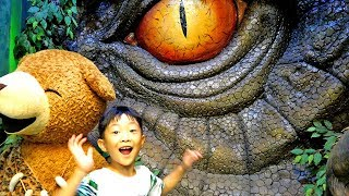 Kids Museum Dinosaurs and Gian…
