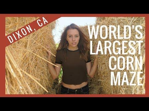 WORLD'S LARGEST CORN MAZE | Dixon, CA