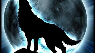 КАК ЛЕГКО НАРИСОВАТЬ ВОЛКА.(В этом видео вы узнаете как ЛЕГКО можно нарисовать волка. Пишите свои комментарии под видео, кого мне нарисо..., 2016-09-25T19:54:35.000Z)