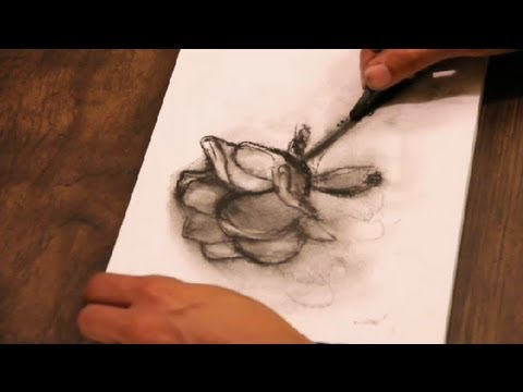 How To Draw A Charcoal Rose Art Tutorials Youtube