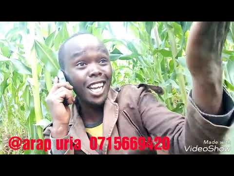 Hallo  Allan...wanasema Land Pornogaraphy Ama Land Topography 🤣🤣🤣🤣🤣🔥🔥🔥#kaleerats