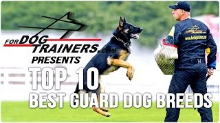 Top 10 Best Guard Dog Breeds - Fordogtrainers Top 10 Chart