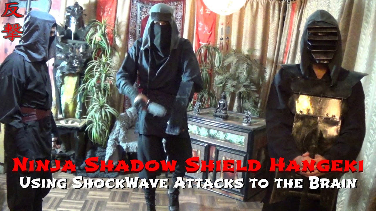 Ninja Shadow Shield Shockwave Attack to the Brain. FREE ONLINE NINJA TRAINING Level 10, Gyokku