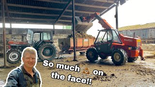 SHIFTING MEGA AMOUNTS OF POO WITH VINTAGE TRACTORS! BREAKING GATES ON THE WAY!