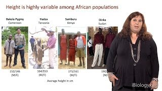 Sarah Tishkoff (U. Pennsylvania) Part 3: African Genomics: Natural Selection