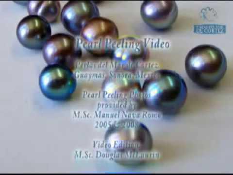 Pearl Peeling Process