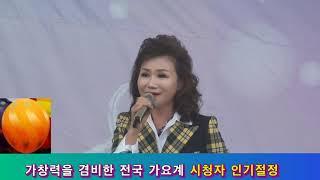 가수 정아인 / 정든 님 / K- POP 가요 베스트 100 / 서대전 시민공원 야외음악당 /대한예술인협회 대전시지회