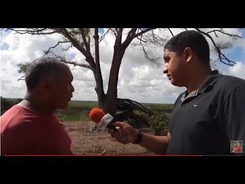 """Marcação: Incêndio destrói patrimônio histórico do município """"Arvore de Marcação"""" (Veja Vídeo)"""