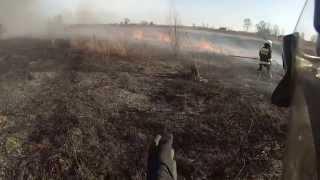 Duży pożar traw