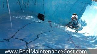 Swimming Pool Maintenance Cost Tips & Techniques(, 2016-11-29T15:38:41.000Z)