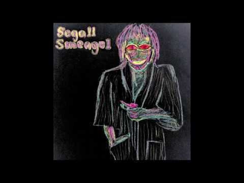 Ty Segall - Jump Into The Fire