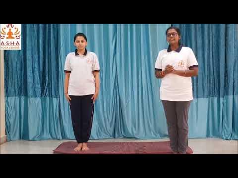 surya namaskar for beginners  sun salutation with 10