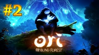 Ori And The Blind Forest Walkthrough Part 2 - Find the Spirit Tree (Xbox One Gameplay)