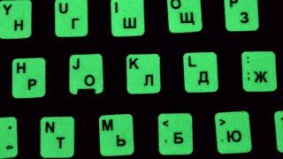 Копеечная, светящаяся ночью клавиатура и 2 ЖИВЫЕ кошки)