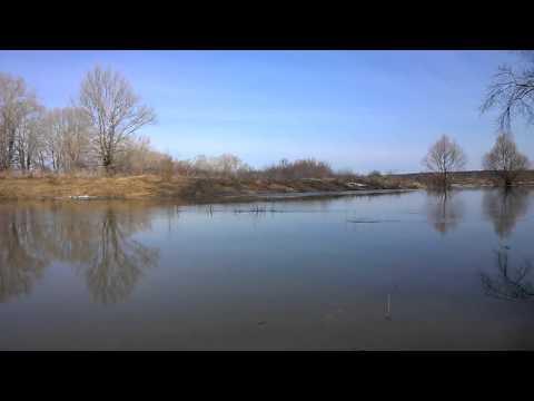 весенний запрет на рыбалку в волгоградской области