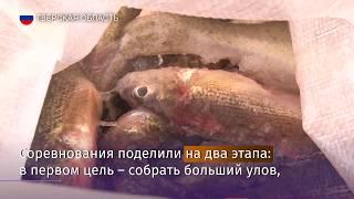 Известия на 10-м Юбилейном Всероссийском фестивале ''Народная рыбалка''