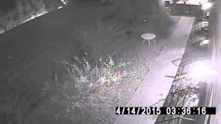 STOLEN NISHIKI: East Hollywood Bike Thief (4)