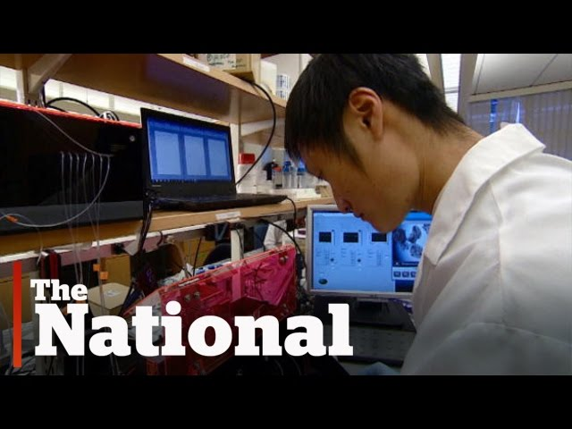 3-D printing organs