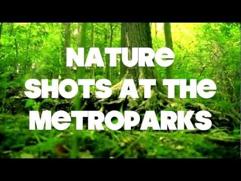 Nature Shots at The Cleveland Metroparks