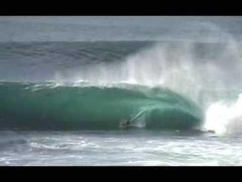 No Friends Bodyboard - Recognize The Enemy - Shark Island -