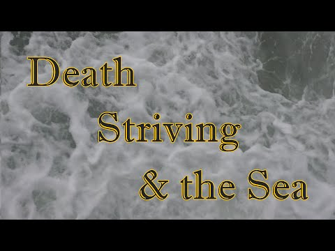 Death, Striving, & the Sea (the story of a grebe)