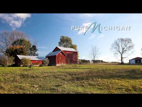 Corn Maze at Bestmaze | Pure Michigan
