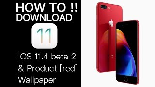 How to download iOS 11.4 beta 2 without dev accounts and iPhone 8 product red wallpaper