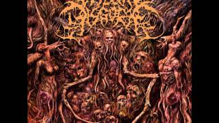 Watch Visceral Disgorge Spastic Anal Lacerations video