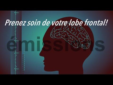 Prenez soin de votre lobe frontal !