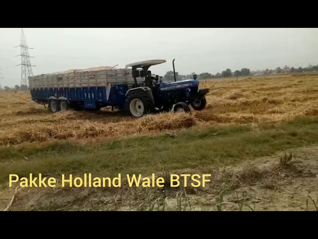 Holland3630 Special Edition Tralla King
