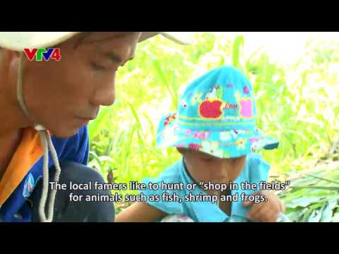 Chronicle - Wandering around Mekong Delta - Episode 27 + 28