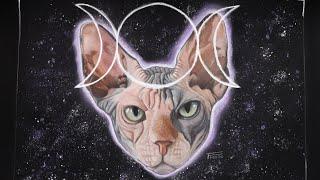 Je dessine mon chat Sphynx Némée PASTEL