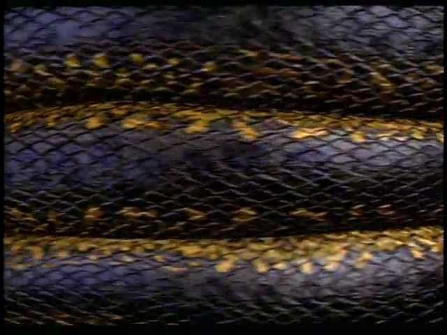 Anaconda (1997) - Trailer