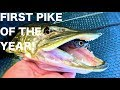 First pike of 2019! January lure fishing for pike - UK Lure fishing