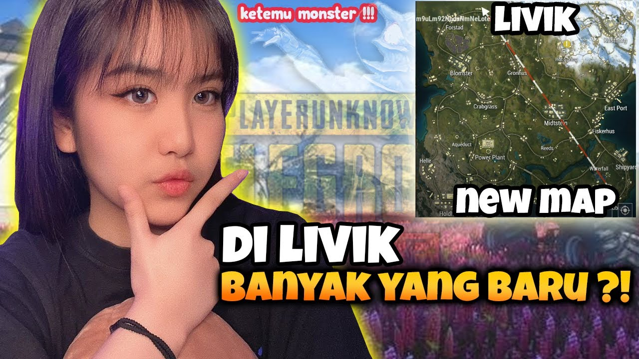 ALICE KETEMU MONSTER DI LIVIK !? - PUBG Mobile Indonesia