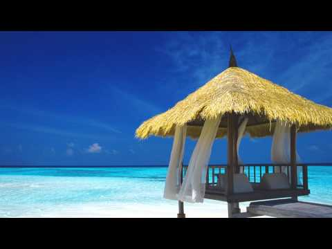 Music for Focus and Productivity - Music for Focus and Concentration - Relaxing Study Music