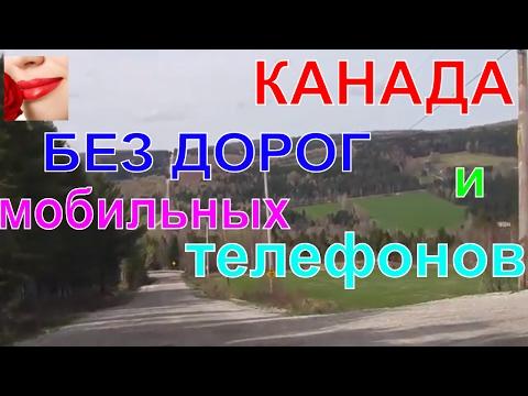 Где Руководство М Видео Магазин Бытовой Техники