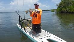 Fishing Wabasso On Paddle Boards