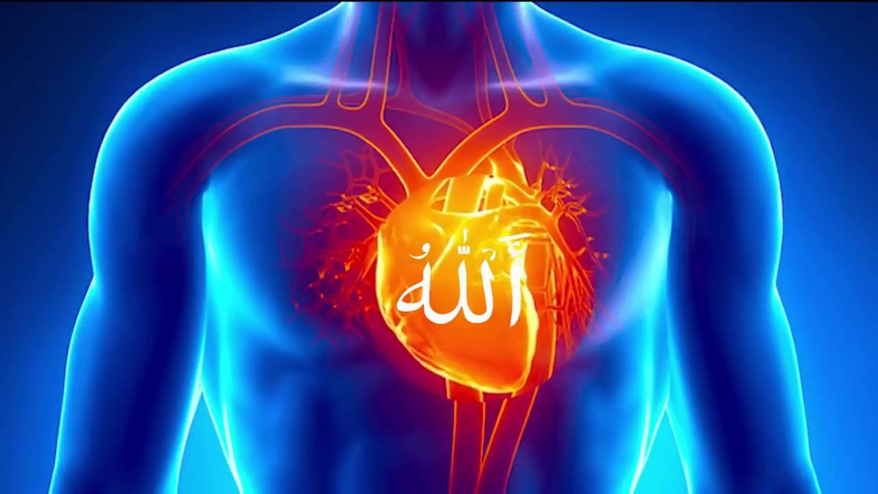 Download Zikr Allah  40 Minutes.  That will clean your soul and heart.